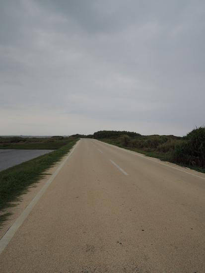 Dscn34161